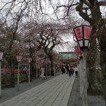 20190322三嶋大社の風景
