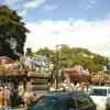 当番町の山車が三島大社大鳥居前に集結