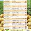 三島馬鈴薯を味わう限定メニュー発表!