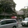 三島大社門前情報20100814