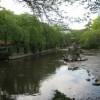 三嶋大社の風景20110514