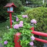三嶋大社の風景20110624