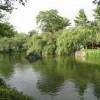 三嶋大社の風景20110628