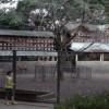 三嶋大社の風景20131012